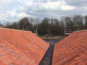 Dachówka holenderka